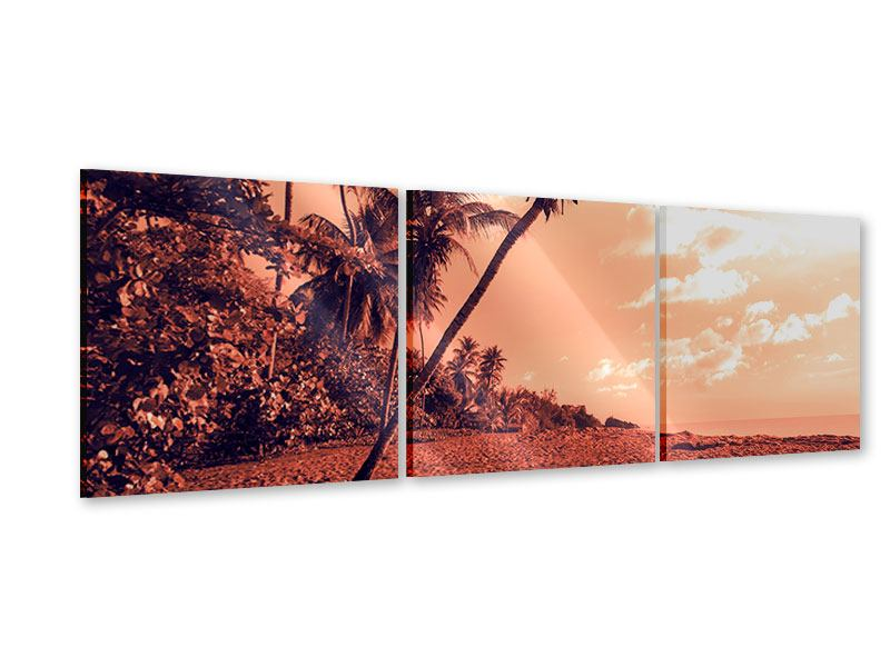 Panoramic 3 Piece Acrylic Print Tropical Paradise