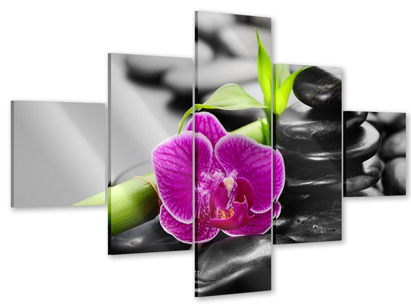 5 Piece Acrylic Print Feng Shui Orchid