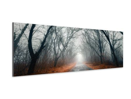 Panoramic Aluminium Print Mysterious Mood In The Forest