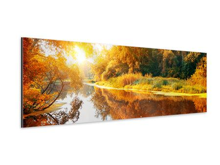 Panoramic Aluminium Print Forest Reflection In Water