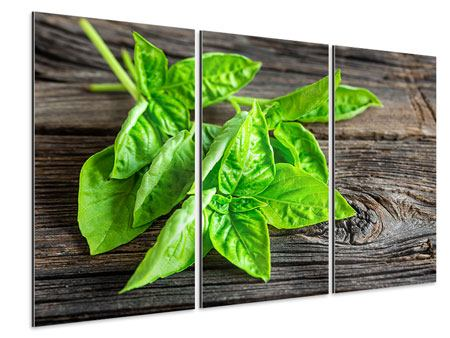 3 Piece Aluminium Print Basil Leaves