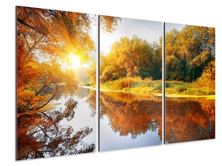 3 Piece Aluminium Print Forest Reflection In Water