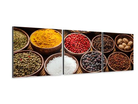 Panoramic 3 Piece Aluminium Print Hot Spices