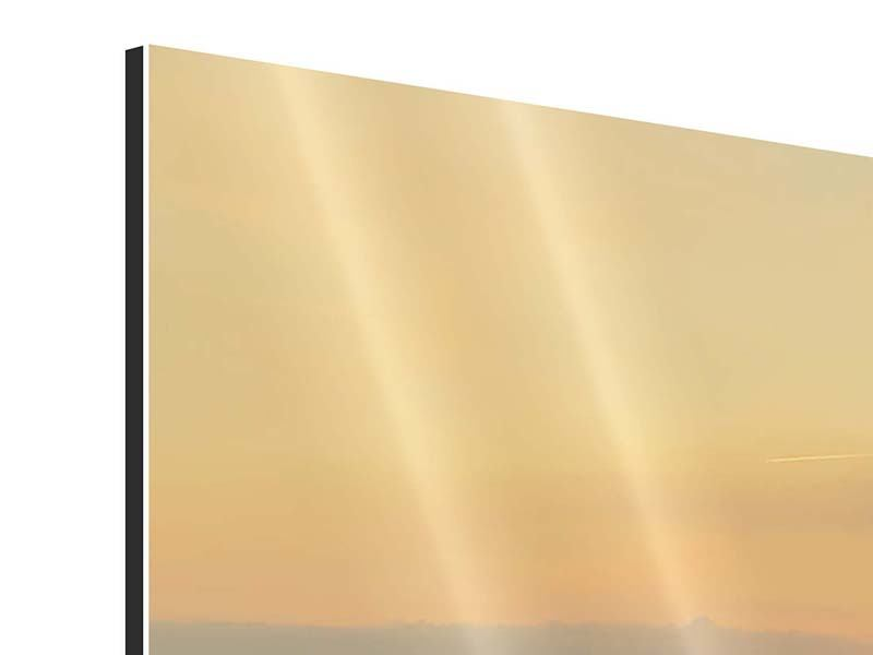 Aluminium Print Skyline Cologne At Sunset