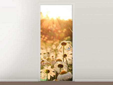Door Mural Daisies At Sunset