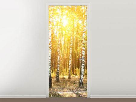 Door Mural Birch Forest