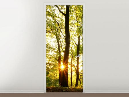 Door Mural Sunset Between Trees