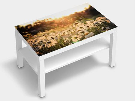 Furniture Foil Daisies At Sunset