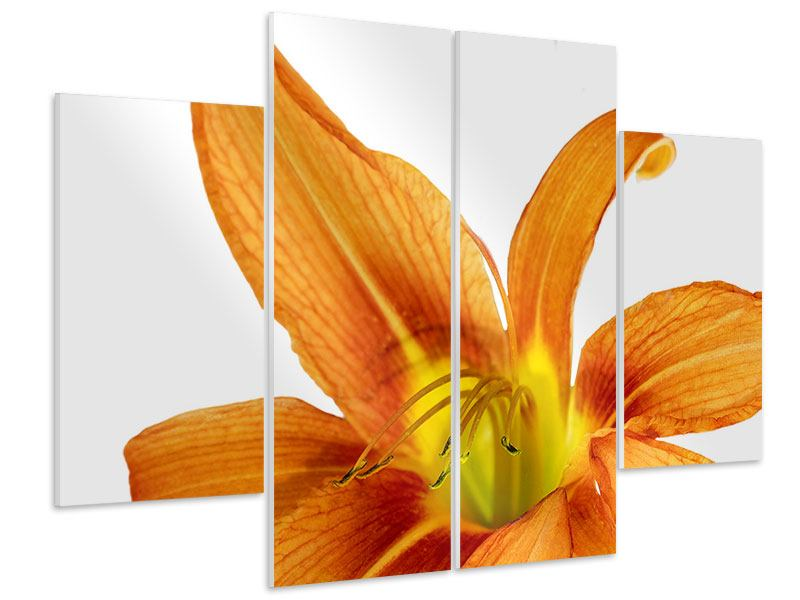4 Piece Forex Print The Tiger Lily