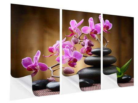 3 Piece Self-Adhesive Poster Wellness Stones