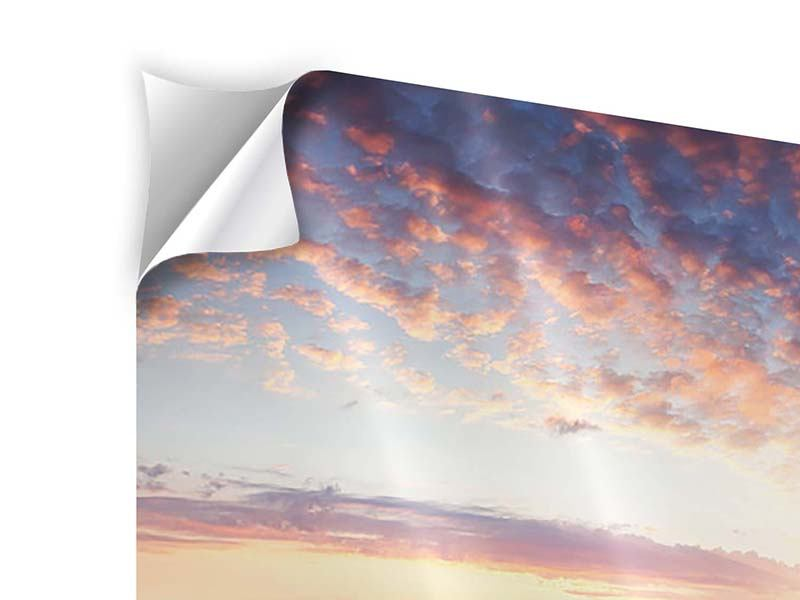 3 Piece Self-Adhesive Poster A Flower Field At Sunrise