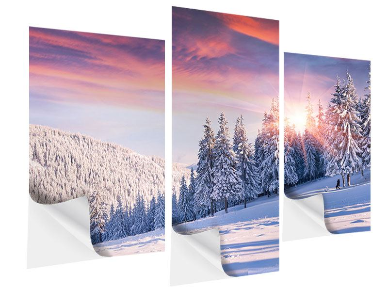 Modern 3 Piece Self-Adhesive Poster Winter Landscape