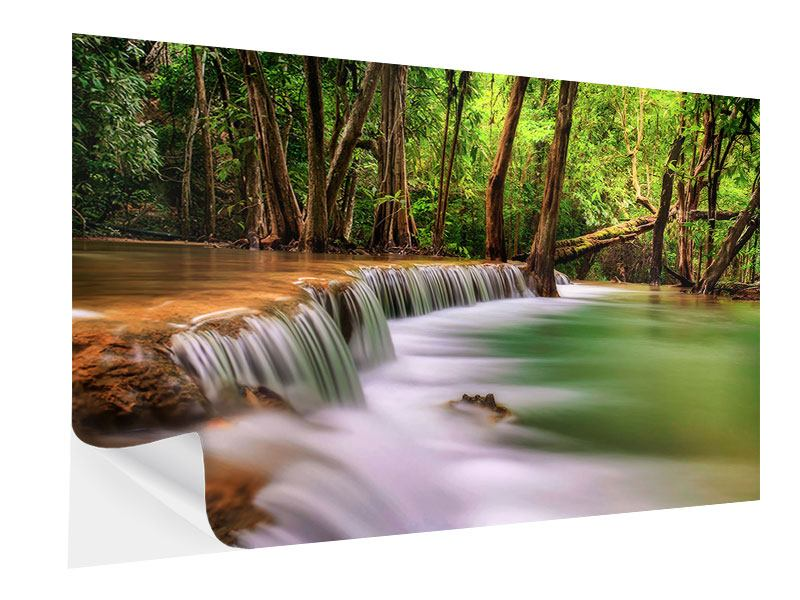 Self-Adhesive Poster Deep Forest