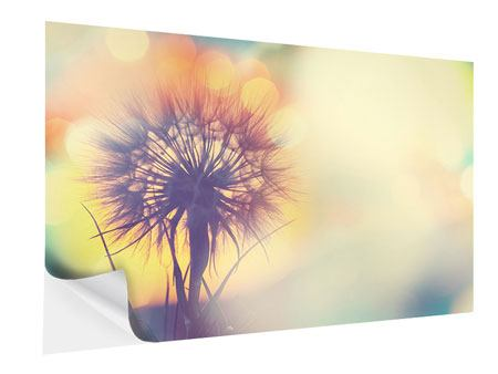 Self-Adhesive Poster The Dandelion In The Light