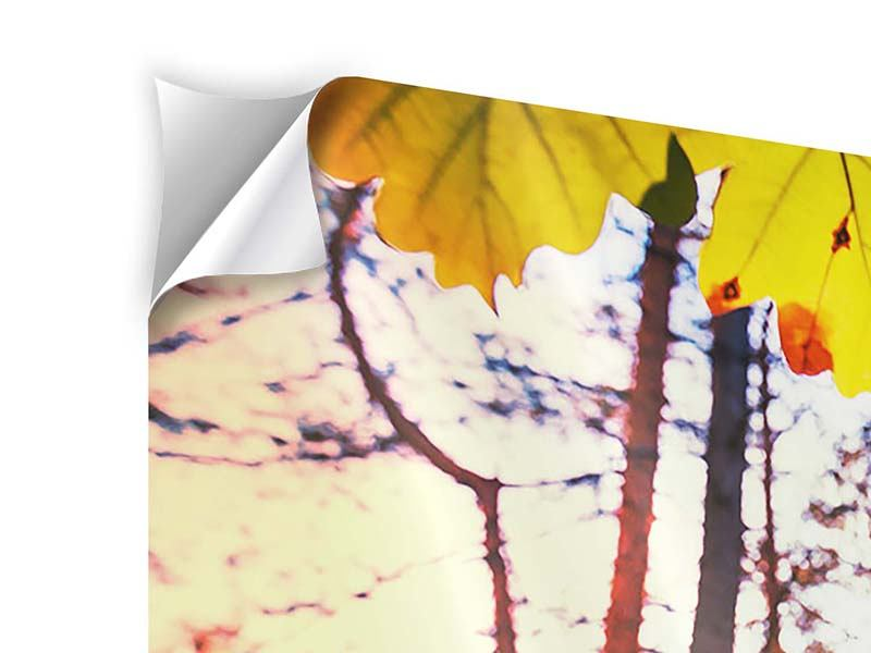 Self-Adhesive Poster Autumn