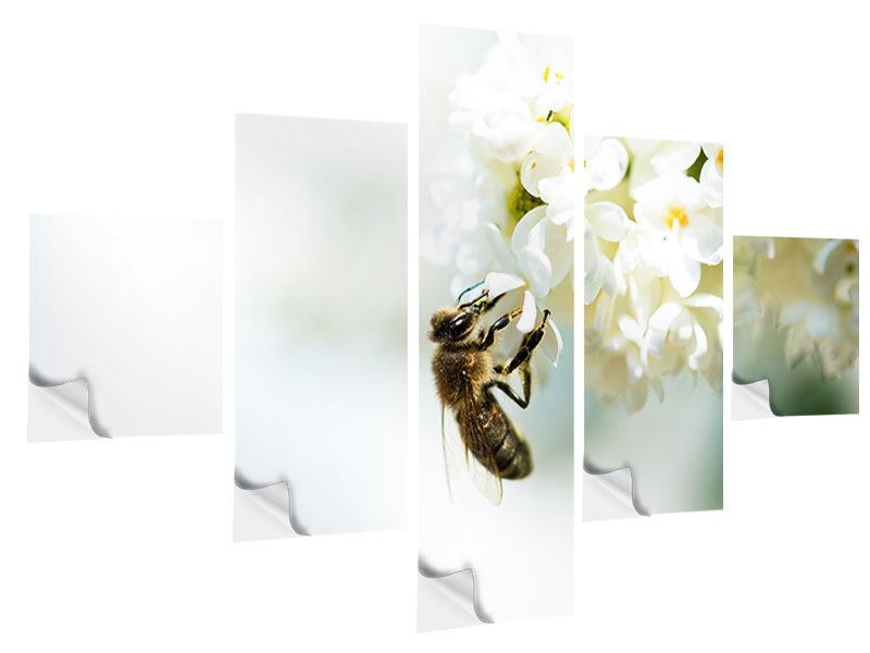 5 Piece Self-Adhesive Poster The Bumblebee And The Flower