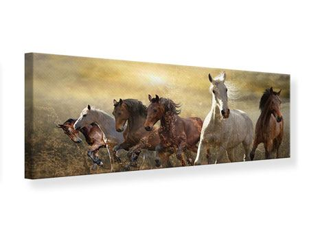 Panoramic Canvas Print Wild Wild Horses