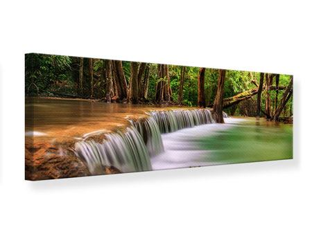 Panoramic Canvas Print Deep Forest