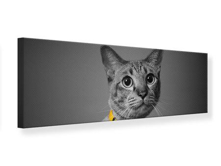 Panoramic Canvas Print Cat Lady