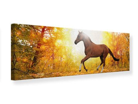 Panoramic Canvas Print Whole Blood In Autumn Forest