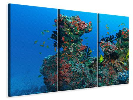 3 Piece Canvas Print The World Of Fish