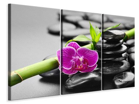 3 Piece Canvas Print Feng Shui Orchid