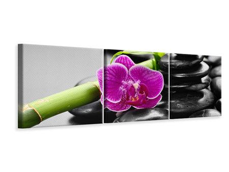 Panoramic 3 Piece Canvas Print Feng Shui Orchid