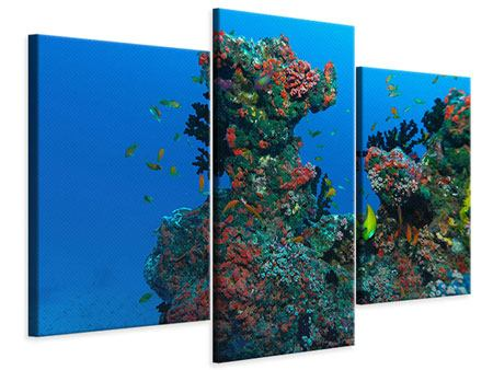 Modern 3 Piece Canvas Print The World Of Fish