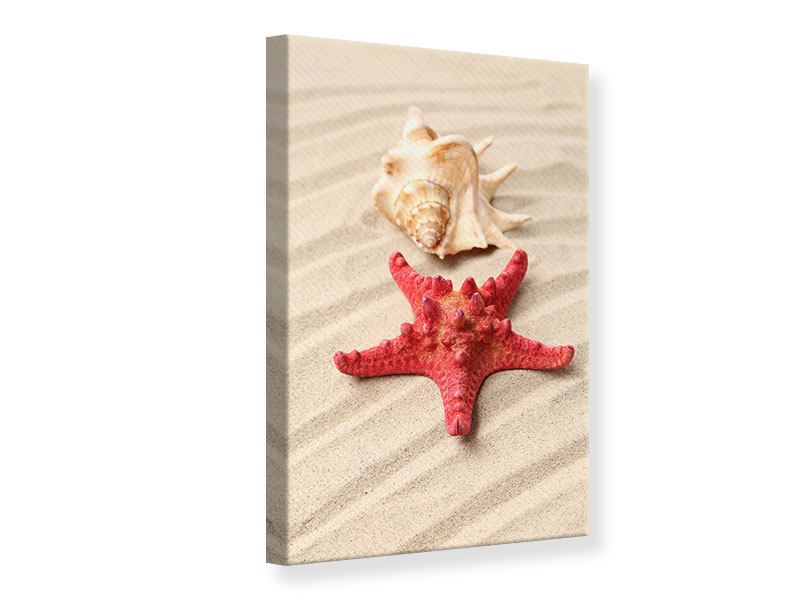Canvas Print The Shell And The Starfish