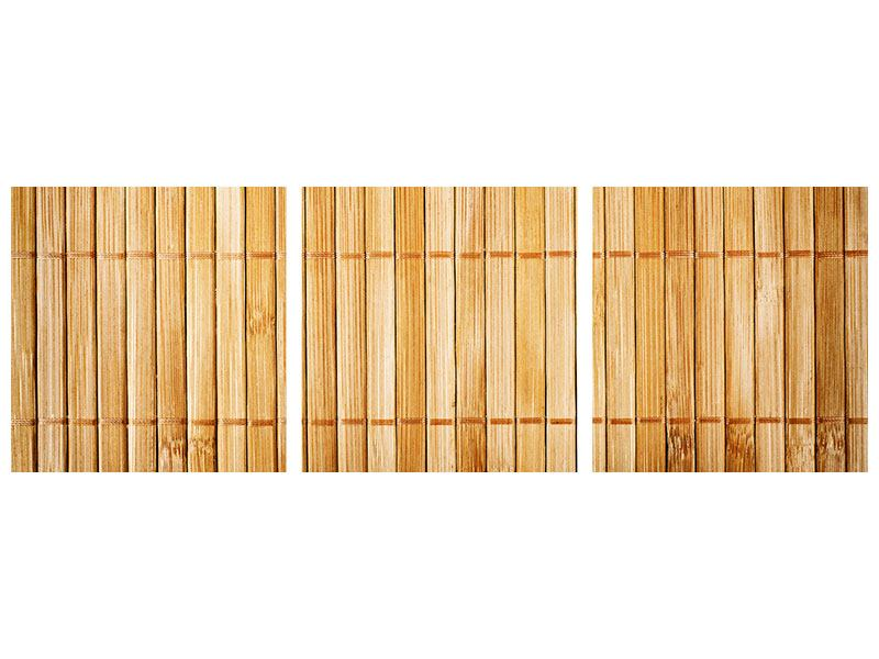 Panoramic 3 Piece Metallic Print Bamboo Canes