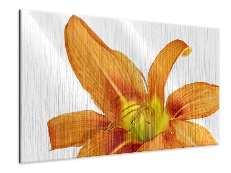 Metallic Print The Tiger Lily