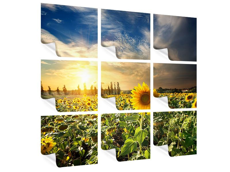 9 Piece Poster Sunny Flowers